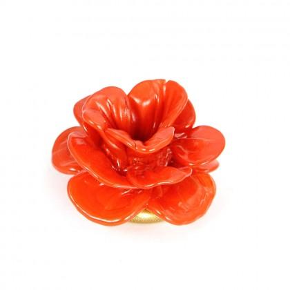 Bugia, Rosa rossa
